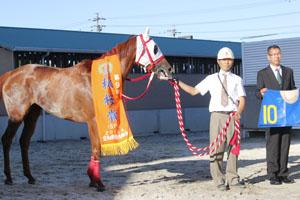 GDJ2015 中京スポーツ杯 第9回 ...